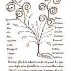 Herbarius (BH125)