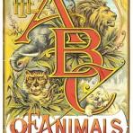 ABC of Animals (CH103)