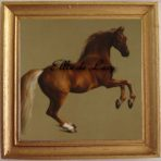 Whistlejacket (G118)