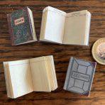 Ledger Books (DF06)