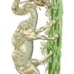 Historiae Animalium (NH101L)