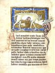 Medieval Bestiary (NH121L)