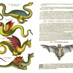 Magical and Mythical Creatures (SP105L)